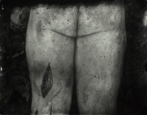 Body Farm, Sally Mann